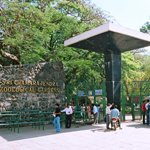 Budgets hotel in mysore